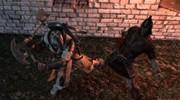 The Cursed Crusade - Screenshot #57100