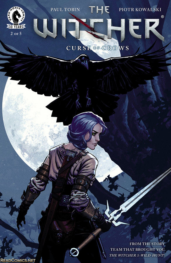 the witcher buch