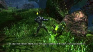 Kingdoms of Amalur: Reckoning - A Hero's Guide to Amalur #3: Waffenfertigkeiten (de)