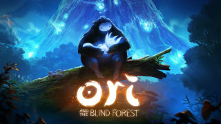 Ori and the Blind Forest - E3 2014 Announcement Trailer
